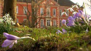 Schloss und Winterblüher vu © Guenter Wallbrecht